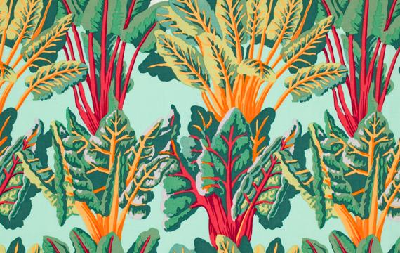 Chard Leafy 1,14m*13,7m - 40.00 lei