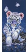 White Baby Tiger