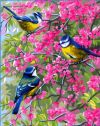 The Blue Chickadees   Flowers