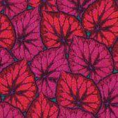 Begonia Leaves Magen 1,14m*13,7m - 40.00 lei